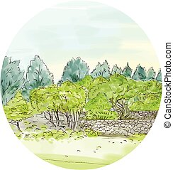 Trees in Park with Cornwall Oval Watercolor