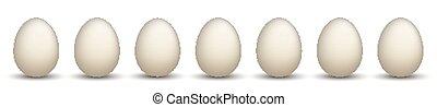 7 Natural Chicken Eggs Header - 7 white chicken eggs on the...