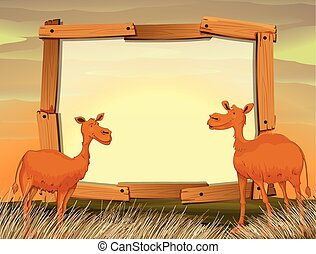 Frame design with camels in the field