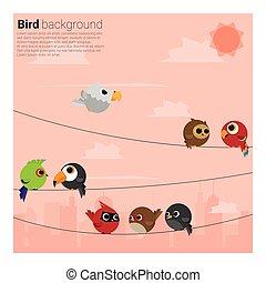 birds on wires background