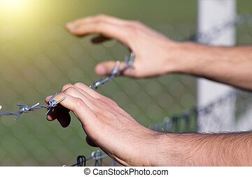 Male hands on barbed wire - Close up of male hands holding...