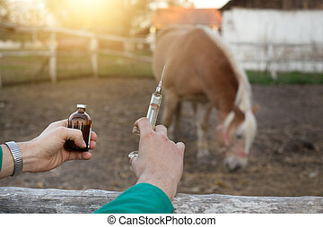 Veterinarian with syringe on farm - Close up of veterinarian...