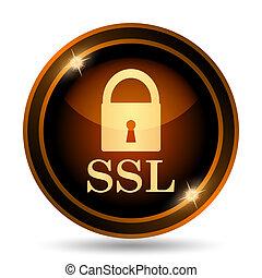 SSL icon Internet button on white background