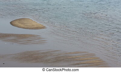 mudflat with bird landscape - view of mudflat with bird...