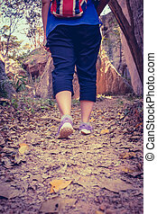 Back view of woman walking exercise in forest, motivational health concept, outdoors.