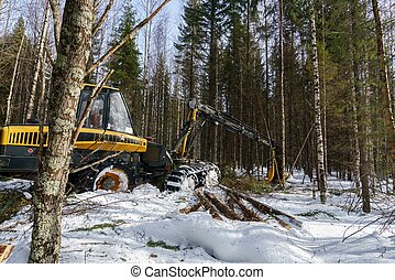 Woodworking in forest Image of logger works - Woodworking in...