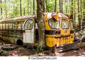 Bartow County School Bus - Rusted out old school bus...