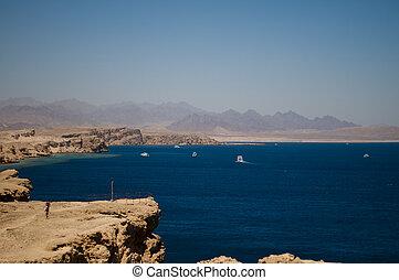 Red sea coast.
