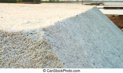 sea salt in salt pan, salt field - Heap of sea salt in salt...