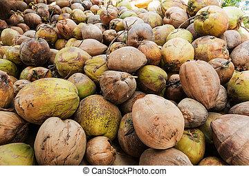 cocos,