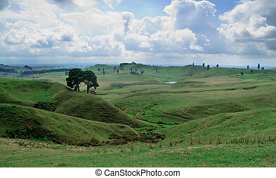Rolling countryside in New Zealand