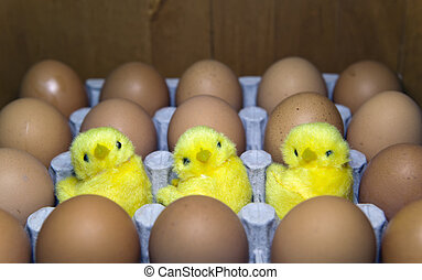 three toy chickens between eggs in