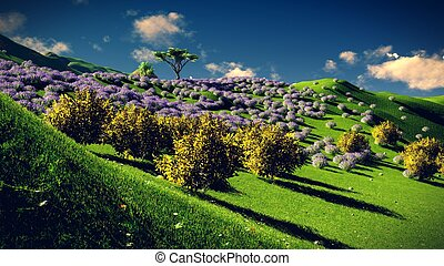 Lavender fields in the evening