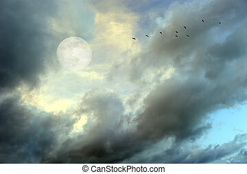 Moon Clouds Birds - Moon clouds birds is a soft beautiful...