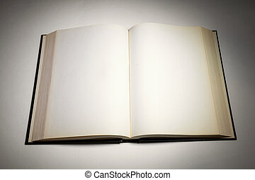 Blank white pages in an open book - Blank white pages in an...