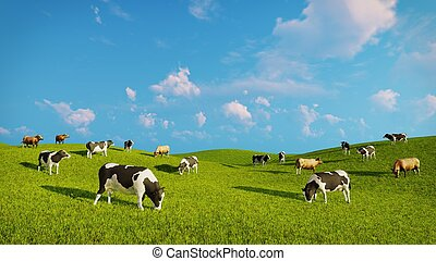 Herd of dairy cows on a green pasture - Herd of mottled...