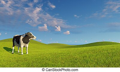 Mottled dairy cow on a green meadows - Single mottled dairy...
