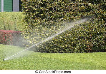 Irrigation System Watering the Garden Automatically -...