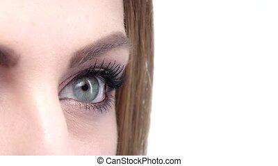 Blue eye on isolated background. Close up - Blue eye on...
