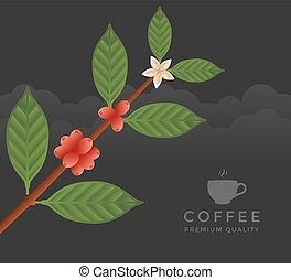 Coffee tree branch Flat vector illustration Ripe coffee
