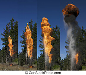 gas flare series - Flare burning off gas and oil at an...