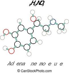 C9H13NO3 adrenaline molecule - C9H13NO3 adrenaline 3d...