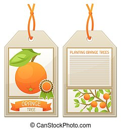 Sale tag of seedlings orange trees Instructions for planting...