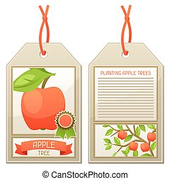Sale tag of seedlings apple trees. Instructions for planting...