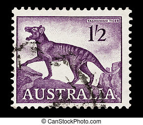 tasmanian tiger - mail stamp printed in Australia featuring...