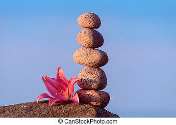 Pink lily and stones - Pink flower of lily and stones at the...