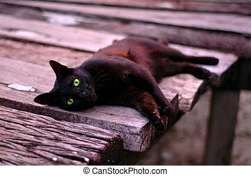 verde, olhos