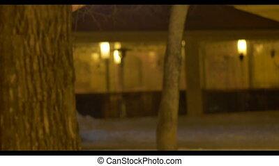 Night Winter Outdoor Lanterns - Modern lantern hang on trees...
