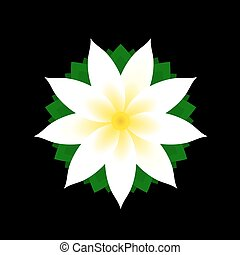Jasmine Flower Icon on Black Background Vector Illustration