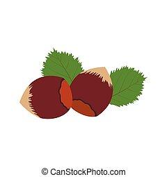 Hazelnut icon flat - Hazelnut icon in flat style isolated on...