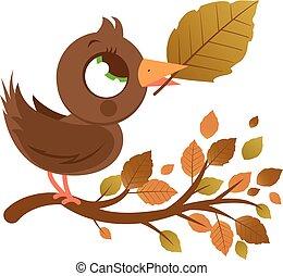 bird in Autumn on a tree branch