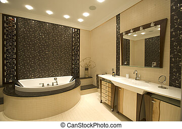 bathroom - big bathroom