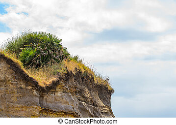 landscape - sedimentary rock with plants and cloudly blue...
