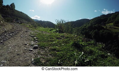 Path in alpine meadows - Camera on steadicam moves along...