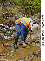 seismic reflective survey - Man placing geophones in the...