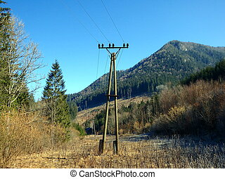 Electricity poles in nature