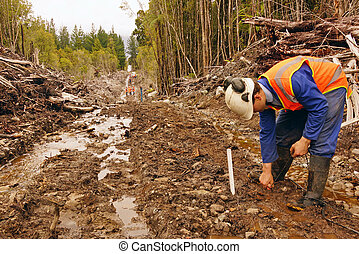 seismic reflective survey - Men placing geophones in the...