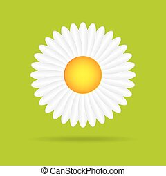 Abstract camomile on green background - Abstract camomile on...