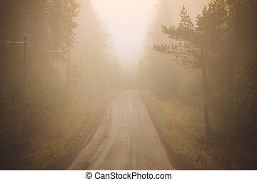 Dirt road and thick fog - Dirt road and thick morning fog...
