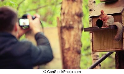 Defocused Man takes a picture from his camera on squirrel in...