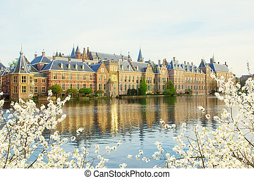 Dutch Parliament at morning, The Hague