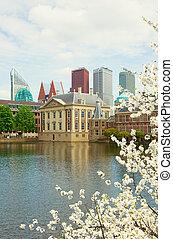 Mauritshuis, Den Haag, Netherlands - Mauritshuis building...