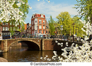 canal ring in Amsterdam, Netherland - view of canal ring in...