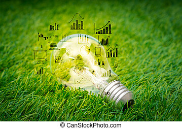 light bulb grow in the grass with business graph