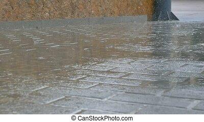 rain on asphalt road movement autumn - rain on asphalt road...