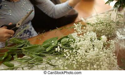 female hands cutting shears white flowers gypsophila for...